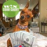 Win $500 Cash from Its our Fab Fash