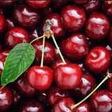 Win 2kg boxes of sweet cherries from Jackson Orchards in Cromwell