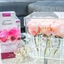 Win Easter Flowers Bundle and $150 Flower Wall or Sequins Wall Voucher