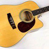 Win a Denny Zager Easy Play Custom Guitar