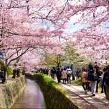 Win a Holiday in Kyoto for 2 Worth $4,900 from