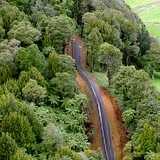 Win a Kiwi Experience for Two at Sanctuary Mountain Maungatautari