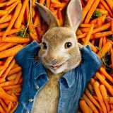 Win a Peter Rabbit on DVD'