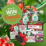 Win a Tomato Care Pack