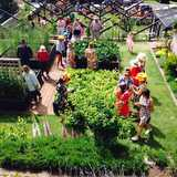 Win a Trip To The Taranaki Garden Festival