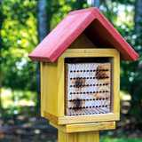 Win a bee bath, bumblebee nesting box, leafcutter bee house and coccoons
