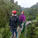 Win a high-flying adventure with Rotorua Canopy Tours